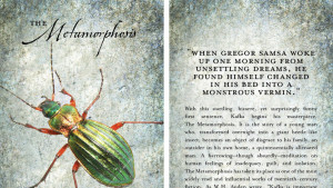 The Metamorphosis: Book Cover